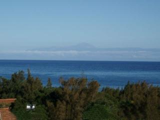 Wonderful penthouse in Canary Islands - Agaete vacation rentals