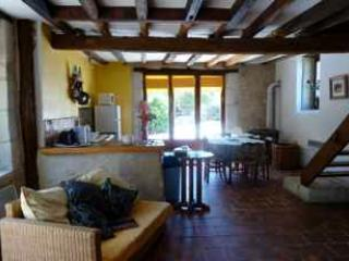 Loire Valley Excellence - Les Vignes - stone house - Centre vacation rentals