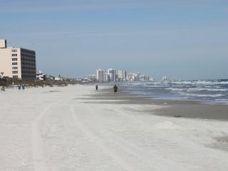 Oceanside Condo - Ponce Inlet vacation rentals