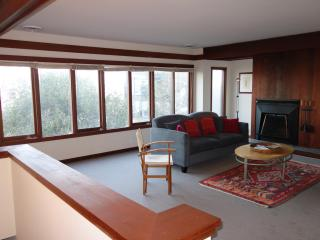 ZPLWI0716  2 bedroom 2 ba w large attached garage! - San Francisco vacation rentals