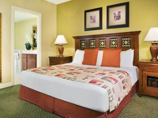 LEO Birthday Special - Long Weekend at La Cascade Wyndham - San Antonio vacation rentals