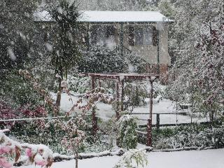Owls Cottage - Blue Mountains vacation rentals