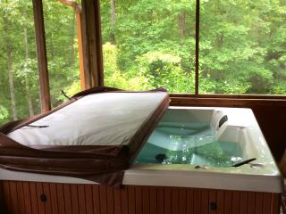 BEARFOOT HIDEAWAY *Hot-Tub&Deck all SCREENED-IN* - Blue Ridge vacation rentals