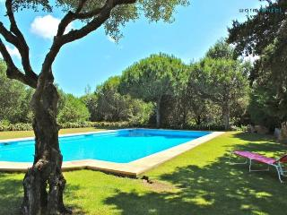 Fagus Villa - Lisbon District vacation rentals