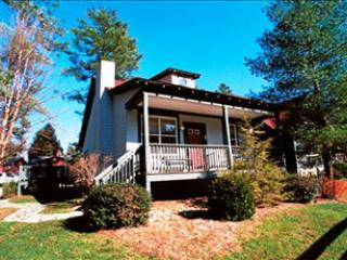 Forsythia 121276 - Flat Rock vacation rentals
