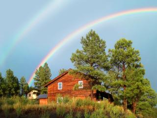 Split Pine Cabin: Quiet retreat & homebase for fun - Pagosa Springs vacation rentals