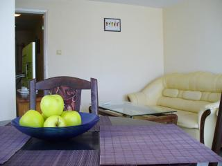 A quiet and sunny apartment in the center of Varna - Varna vacation rentals