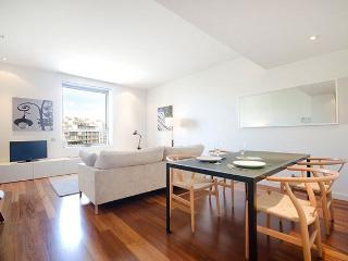 B241 NEW CITY CENTRE - Barcelona vacation rentals