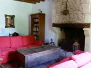 Living room @ Les Chenes - fire place - Les Chenes @ La Juberdiere - country house set on a courtyard garden with private pool - Montresor - rentals