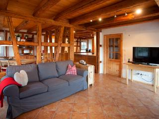 Exclusive Country house in the Black Forest - Seewald vacation rentals