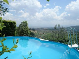 Apartment  With Private Pool And Garden,great View - Florence vacation rentals