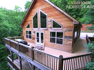 Roomy Lodge. Boat Dock, Jacuzzi, Satellite, Grill. - La Follette vacation rentals