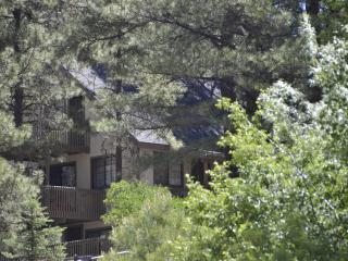 Perfect Family Getaway - Ponderosa Pines Flagstaff - Northern Arizona and Canyon Country vacation rentals