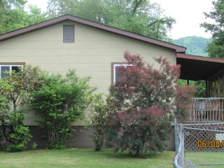 Comfortable and Clean AND Pet Friendly - Rosman vacation rentals