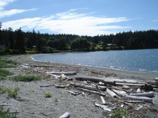 Beautiful private beach view, new construction. - Coupeville vacation rentals