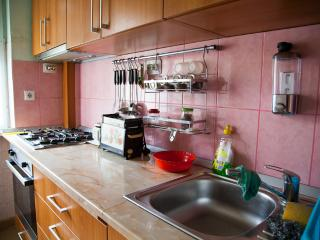 Entire Apartment in the city center - Timisoara vacation rentals