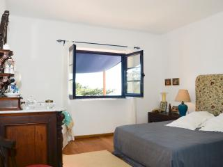 Cascais Villa - Castelo Branco District vacation rentals