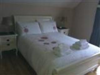 Glensheahan House Killarney- Great location  Wi-Fi - Killarney vacation rentals