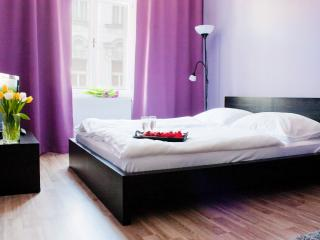 STUDIO APARTMENT IN PRAGUE CENTER - Czech Republic vacation rentals