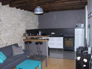 Chic et Cosy - Fontainebleau vacation rentals