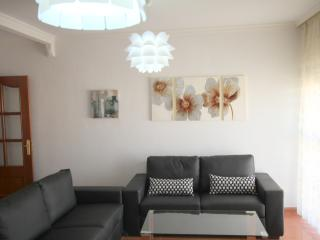 Apartment for rent in the centre of Málaga - Malaga vacation rentals