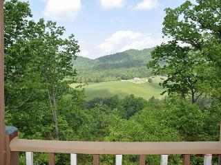 Rustic, Private, Secluded, Amazing Mountain Views, Pet Friendly, Hot Tub - Blairsville vacation rentals