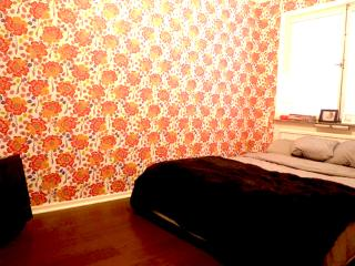 Happy Bloom *** Cocoon  (STOCKHOLM) - Sweden vacation rentals