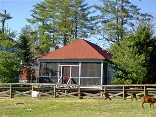 Buttercup 94039 - Flat Rock vacation rentals