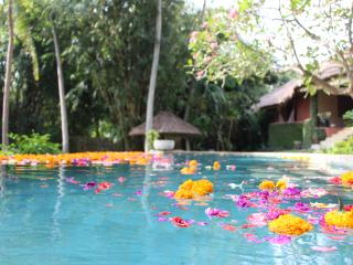 AWARD WINNING TROPICAL LUXURY IN PRIME LOCATION - Umalas vacation rentals