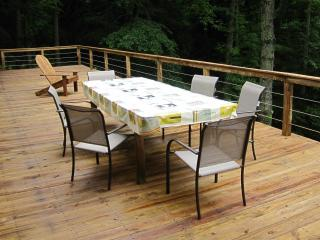 GORGEOUS VIEW OF THE BLACK MTNS! CLOSE TO TOWN. - Blue Ridge Mountains vacation rentals