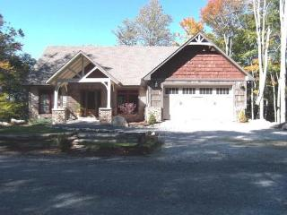 One Step Entry to Level Living 4BR 2BA - Beech Mountain vacation rentals