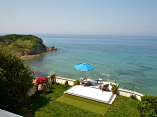 SEAHORSE BEACH VILLA - pool & steps down to sea - Corfu vacation rentals