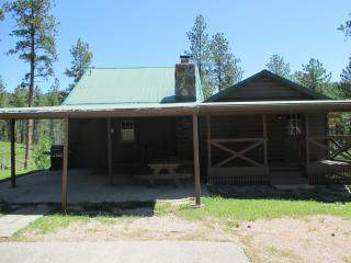 Harney View Cabin - Black Hills and Badlands vacation rentals