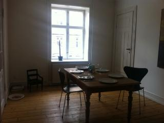 Nice Copenhagen apartment in quiet neighborhood - Denmark vacation rentals