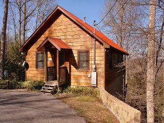 1 Bedroom Cabin Between Gatlinburg and Pigeon Forge with Mountain Views - Sevierville vacation rentals