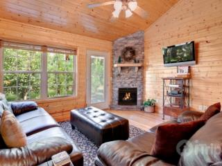 Cajun Cabin - Tennessee vacation rentals