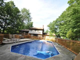 LUXURIOUS POOL Home on 1 Acre - 5 Min to CAMELBACK - Tannersville vacation rentals