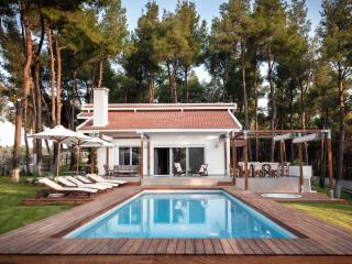 SANI WHITE VILLA HALKIDIKI GREECE - Sani vacation rentals