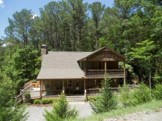 Welcome to Beary Kozey - Ellijay vacation rentals