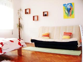 LAST MINUTE FOR AUGUST! - Zagreb vacation rentals