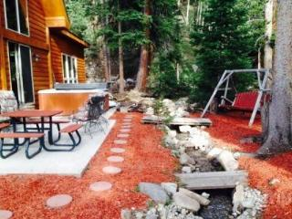 Pets OK!  Large Hot Tub, Streamside Location for Families to gather and play!  10 Min to Breck - Blue River vacation rentals