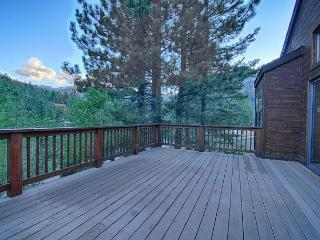 Blum Home - Pet Friendly Vacation Rental with Sauna, Hot Tub and Killer Views - Alpine Meadows vacation rentals