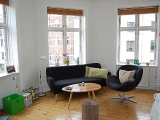 Spacious and charming Copenhagen apartment near Forum - Copenhagen vacation rentals