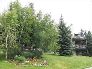Easy Walk to the Ski Slopes - About 150 Yards - Heated Pool & Hot Tub - Winter & Summer Only (3841) - Steamboat Springs vacation rentals