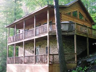 Arbor Den Log Cabin spacious cabin with great access to Boone/ Blowing Rock - Blowing Rock vacation rentals
