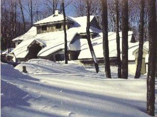 Woods Resort & Spa Village 17- Two bedroom plus Loft Two bathrooms Health Club Privileges - Killington vacation rentals