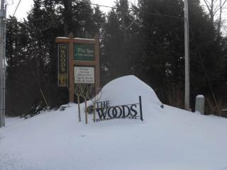 Woods Resort & Spa Village 48 - Two bedroom Two bathroom Health Club Privileges - Killington Area vacation rentals