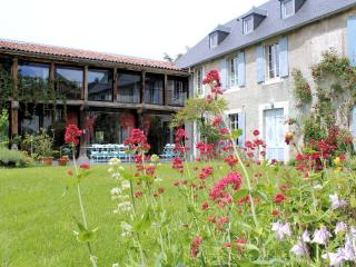In La Barthe de Neste, large character-filled home with unobstructed mountain view - Midi-Pyrenees vacation rentals