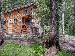 Chalet am Berg - NEW! Fireplaces, hot tub, dogs ok - Government Camp vacation rentals