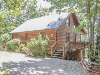 OVERLOOK RETREAT*4 BR~3 BA~CABIN WITH AMAZING MOUNTAIN VIEW~PRIVATE~FOOSEBALL~CHARCOAL GRILL~TWO FIREPLACES~GARDEN TUB~SLEEPS 8~ - Blue Ridge vacation rentals